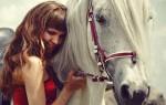 Лошадиный шампунь: польза или рекламный ход?