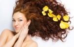 Какие народные средства эффективны для восстановления волос?