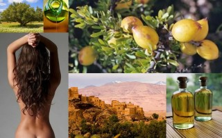 Аргановое масло для волос: применение и свойства аргании