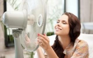 8 советов, как пережить жару