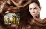 Правильное применение масла для роста волос