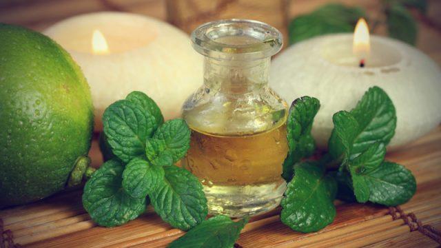 Применение мятного масла в косметике для волос