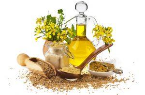Чем полезно кунжутное масло для локонов