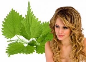 Полезно ли ментоловое масло для волос?